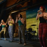 LIVE - Skiffle & Music -Festival 2014